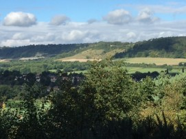 View of the North Downs from Limpsfield Common.