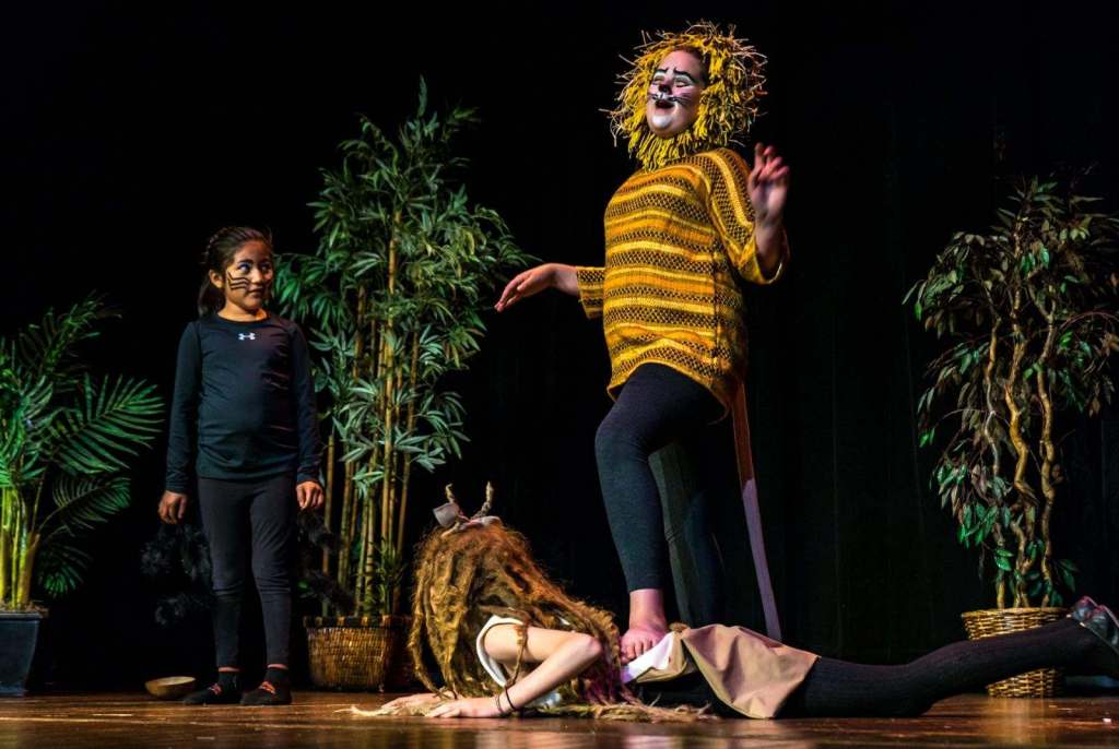 Scenes from the 2018 Theatre Camp performance at the LCCC. (photo by Andre Casey)