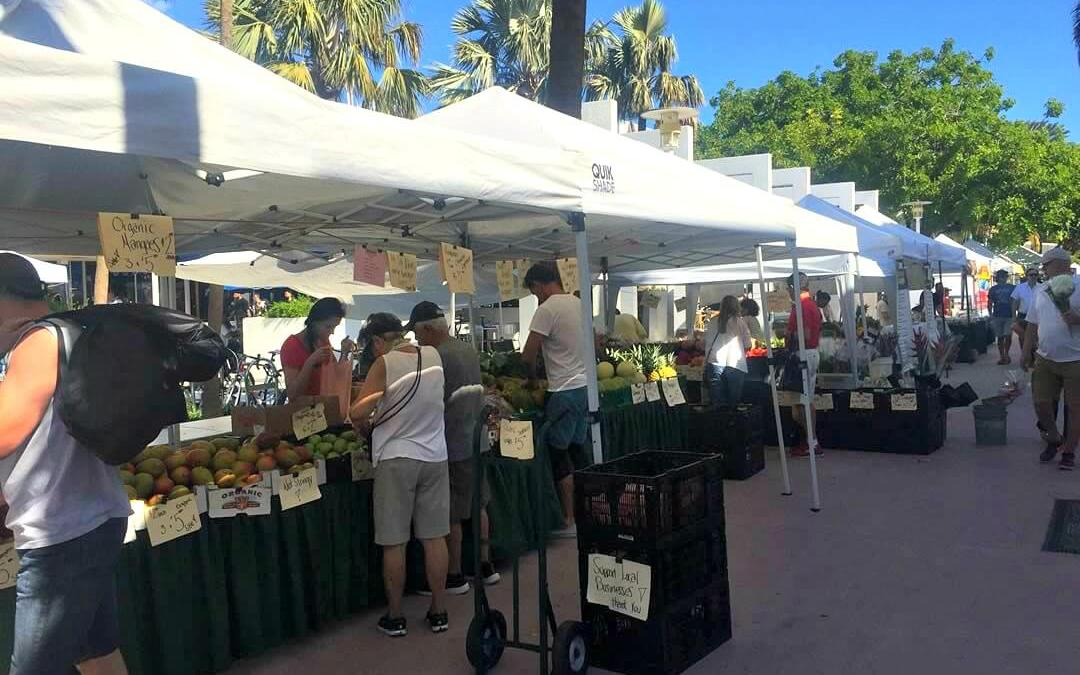 Start Your Sunday at the Lincoln Road Farmers Market