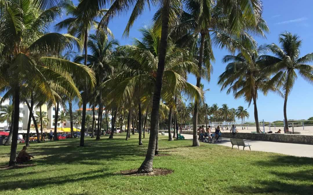 Vacation Tip:  We Have Miles of Beautiful Miami Beach Boardwalk to Enjoy.