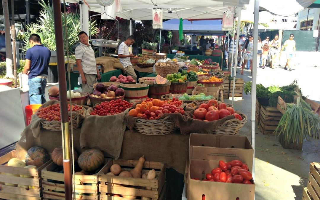 Lincoln Road Farmers' Market Every Sunday