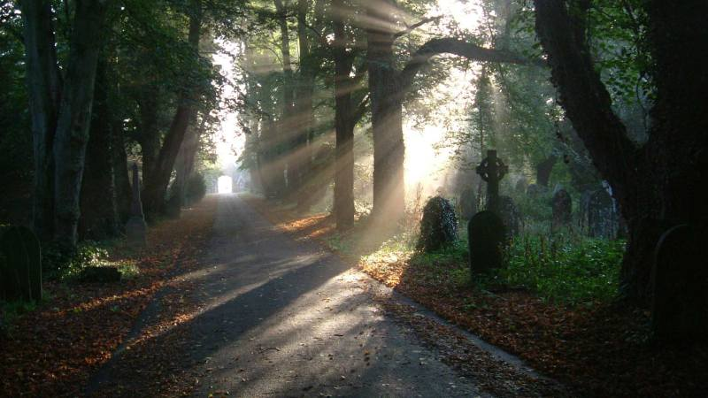 Early morning sun at Boston cemetery. Photo: Boston Borough Council