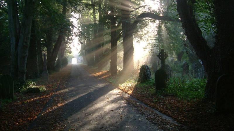 Early morning sun at Boston cemetery. Photo: Boston Borough Council