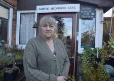 Meet the Lincolnshire woman looking after over 80 hedgehogs this winter