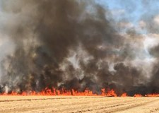No injuries in wheat and combine harvester fire