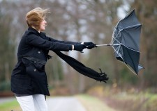 Strong winds set to batter south Lincolnshire
