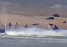 'Stupid' jet ski riders disturb seal colony
