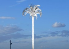 Palm tree taller than Angel of the North will tower over Cleethorpes