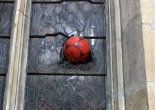 Teenagers smash 170-year-old stained glass window in Sleaford