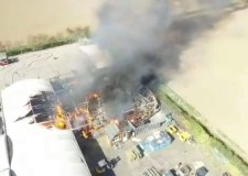 Staff rescue animals from serious Boston garden centre fire