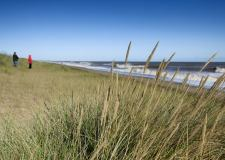 National Trust to turn Lincolnshire coastline into nature reserve