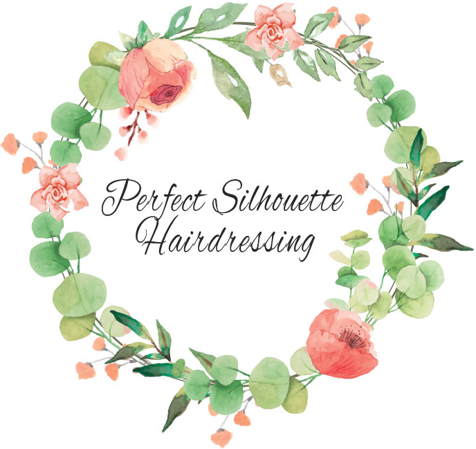 Perfect Silhouette Hairdressing Home