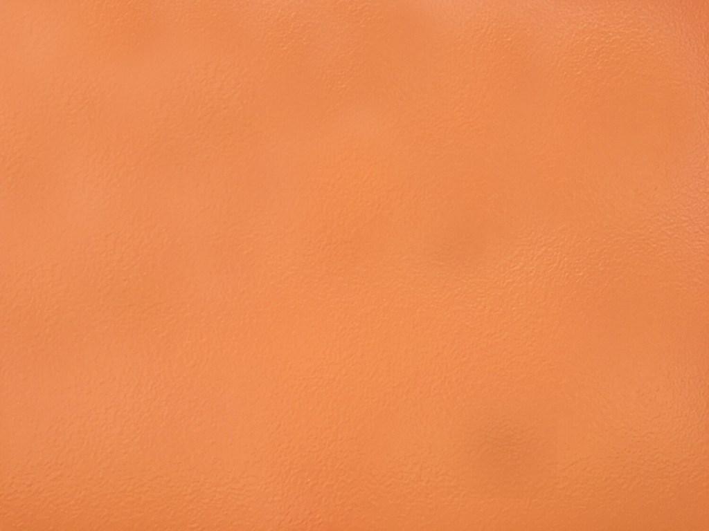Instagrammable Wall - Orange Wall - MacEwan