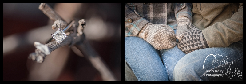 ring shot, outdoor engagement photos
