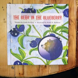 bear-in-the-blueberry-book front