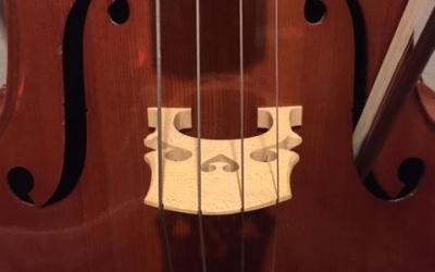 Dear Cello