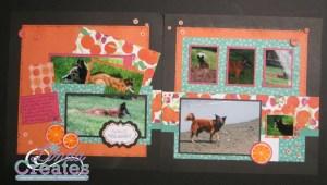 Taste of Summer Orange You Sweet Layout Linda Creates ~ Linda Caler www.lindacreates.com www.lindacreates.ctmh.com