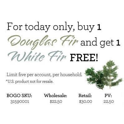 22nov-doug-fir-white-fir-free