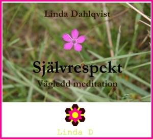 DNK Självrespekt vägledd meditation