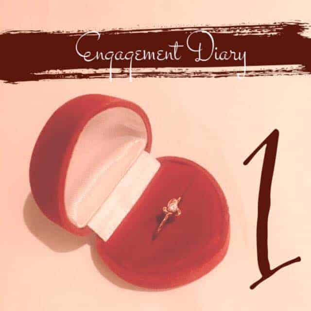 engagement diary