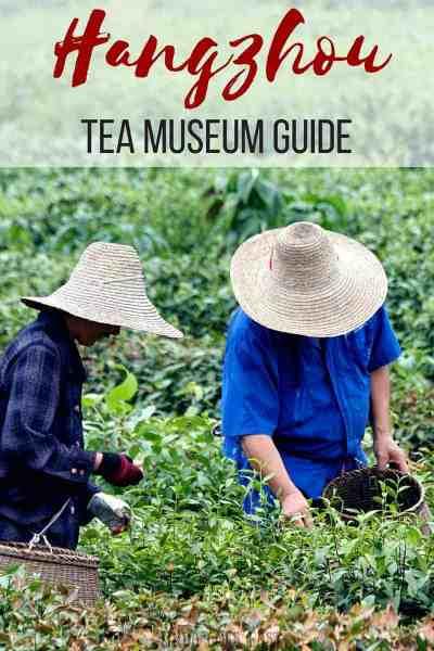 Hangzhou Tea Museum Guide   Linda Goes East