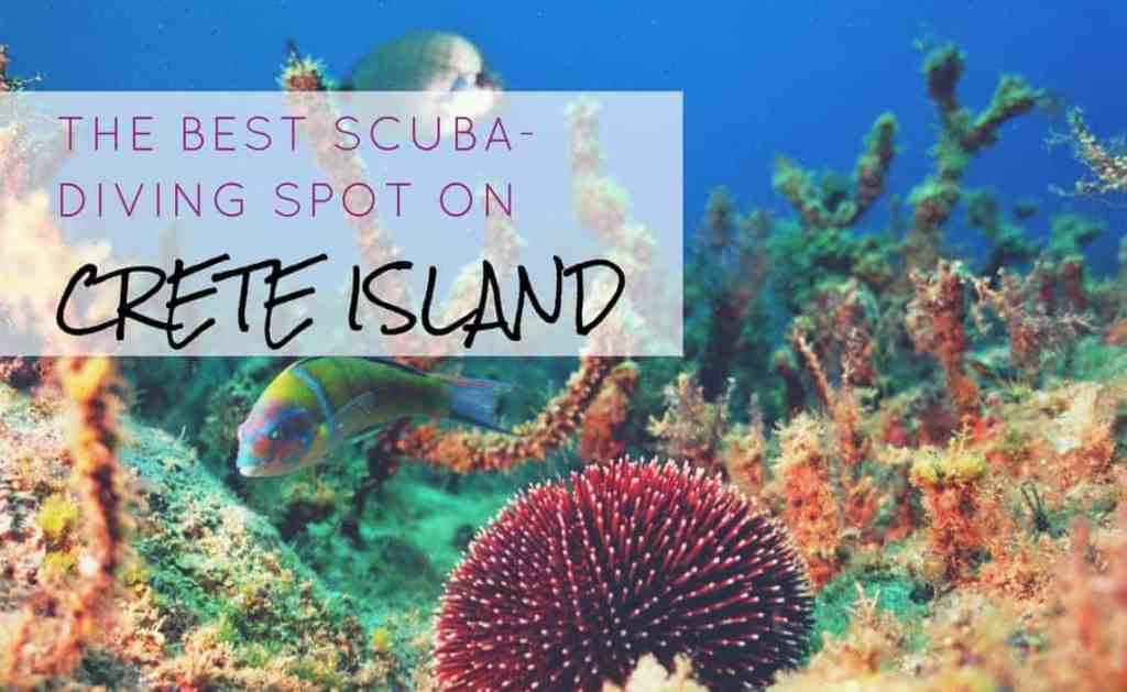 The Best Scuba-Diving Spot on Crete Island