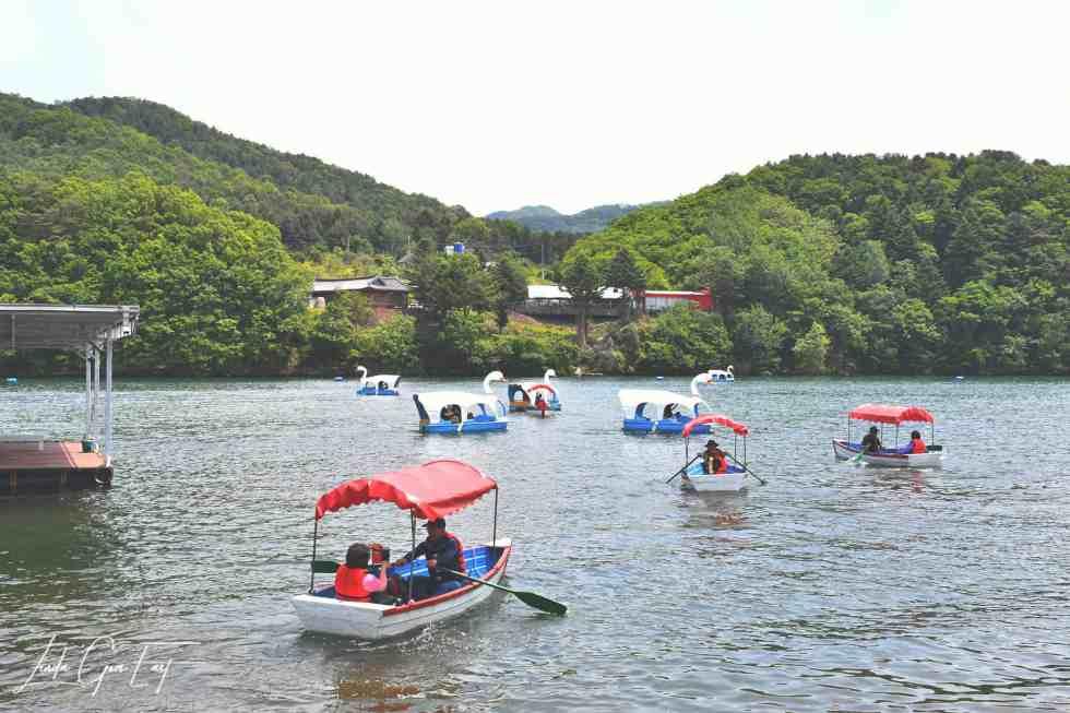 Nami Island and The Garden Of The Morning Calm With Trazy Korea