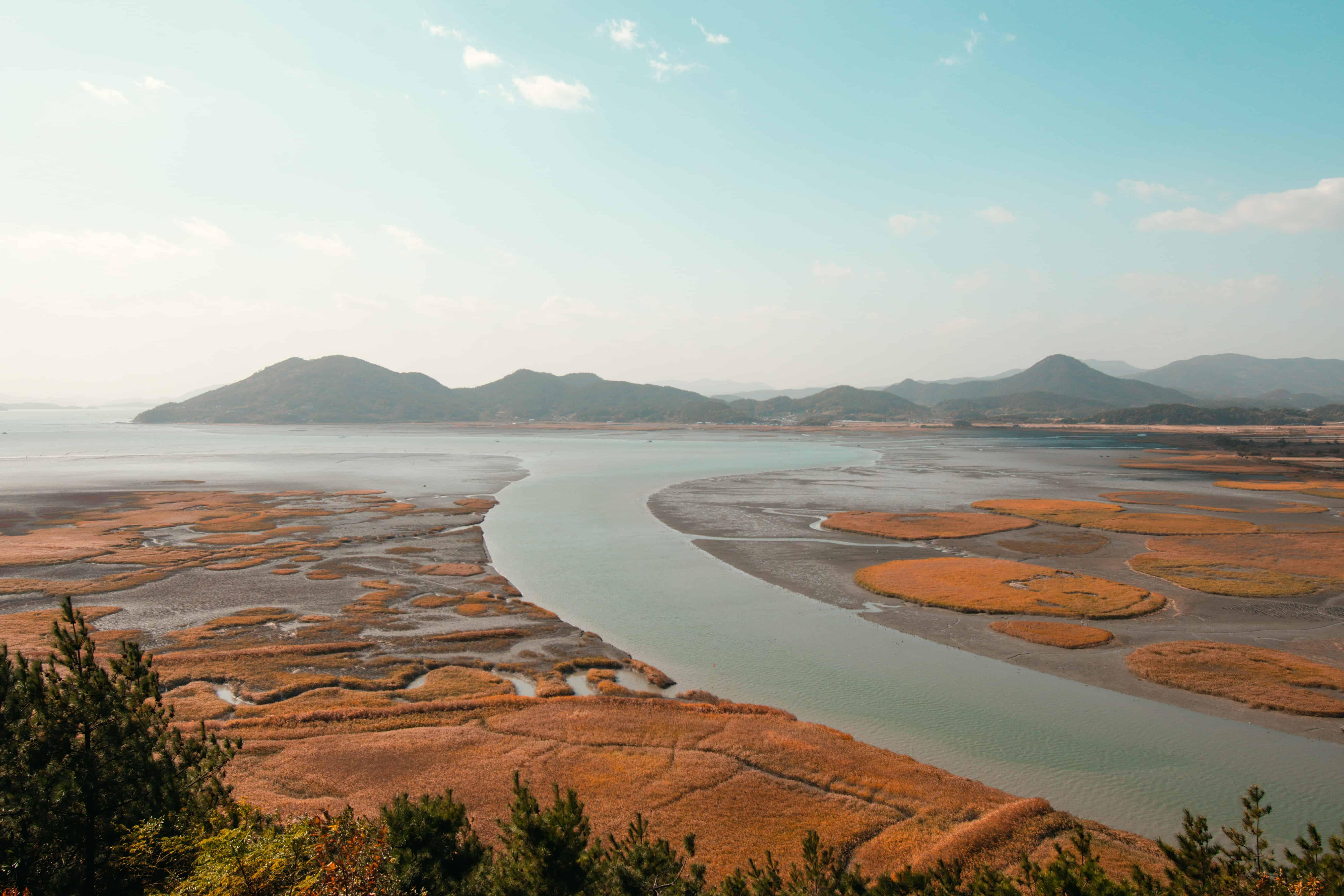 Suncheon Bay Nature Reserve