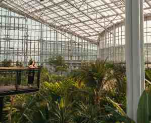 Sejong National Arboretum