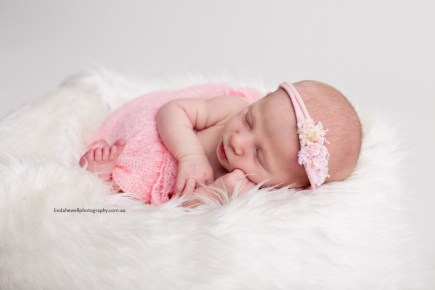 Studio newborn photographer Perth 008