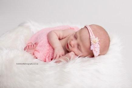 Studio newborn photographer Perth 008
