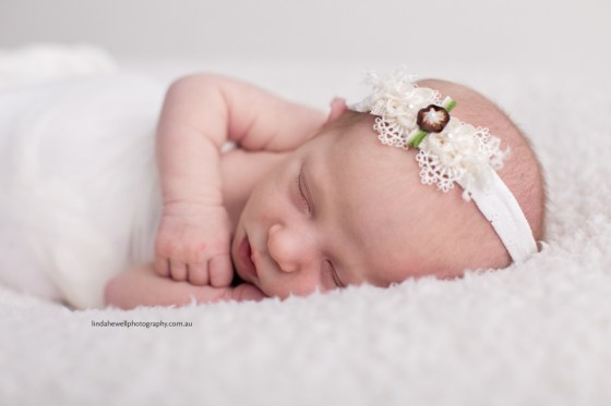 Studio newborn photographer Perth 011