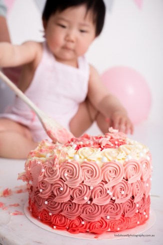 Cake smash 1st birthday photo session 018