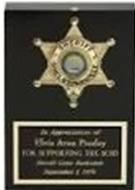 Elvis' encased badge