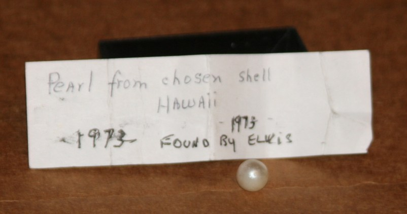 Elvis pearl found in shell in Hawaii (2)