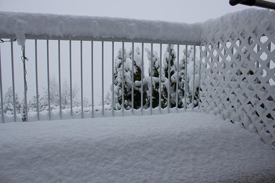 November Snow-1-4