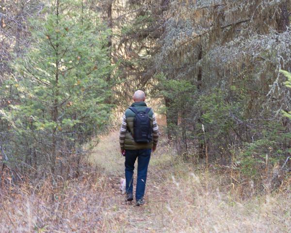 Woods-1-3 (600x480)