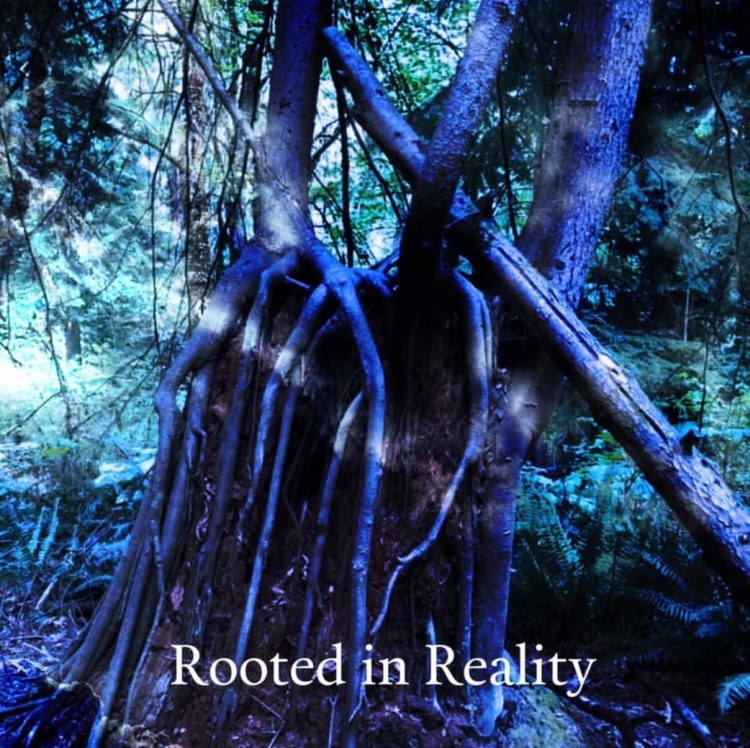 Rooted in realty image