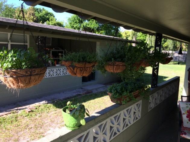 hanging-herb-garden