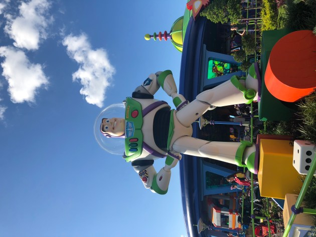 Toy Story Land (1)