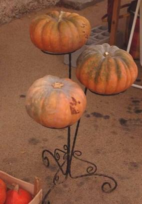 pumpkinfete-17.JPG