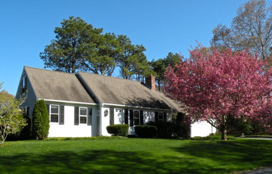 White house on Cape Cod with large Cherry blossom tree