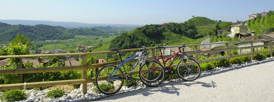 Agriturismo Relais Dolcevista bicylces leaning against a fence