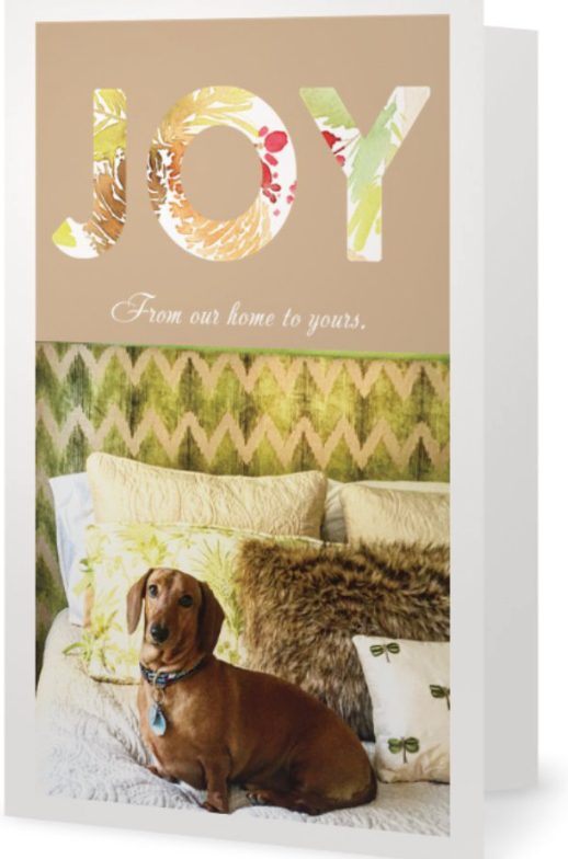 Christmas Card with dachshund on bed