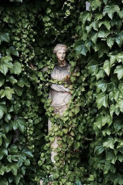 Belton House uk Lady in the Ivy secret garden