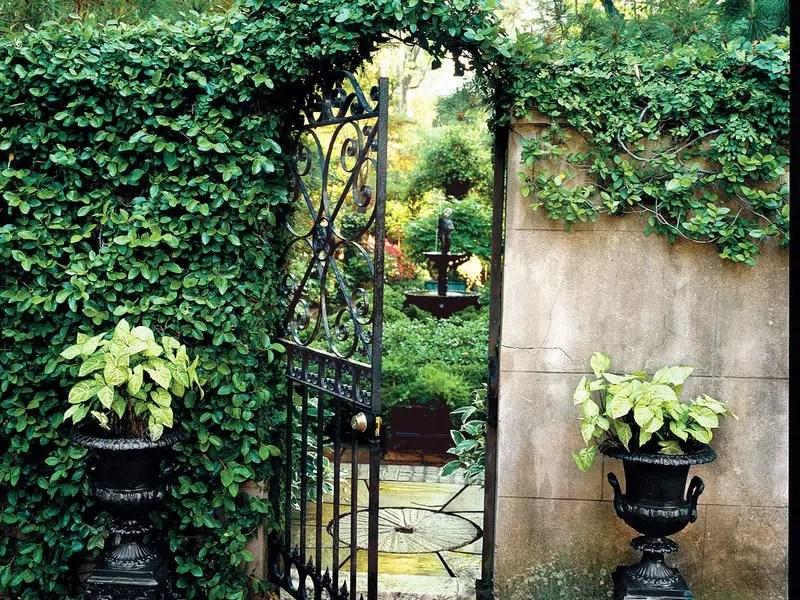 Savannah secret garden southern living wrought iron