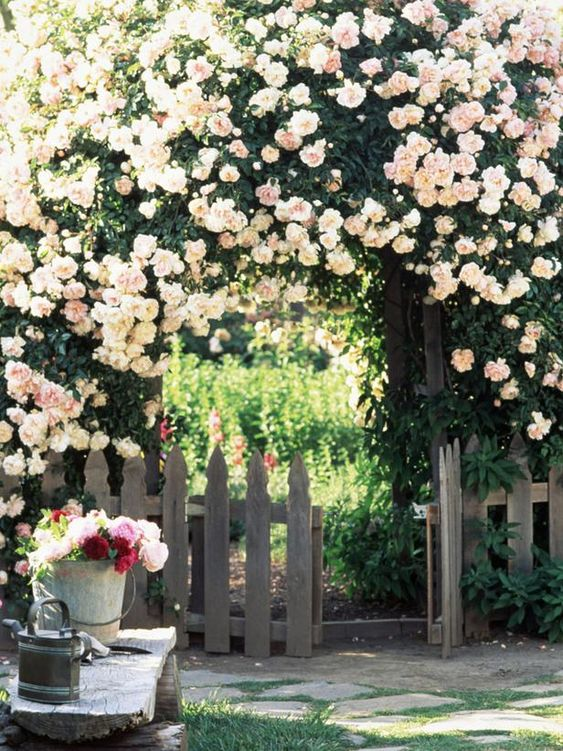 pink rose arbor covering wood picked fence via HGTV secret garden