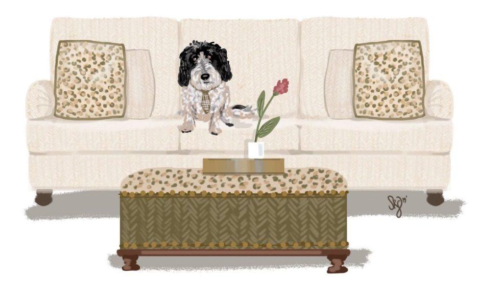 Shelly Gerritsma Ollie illustration