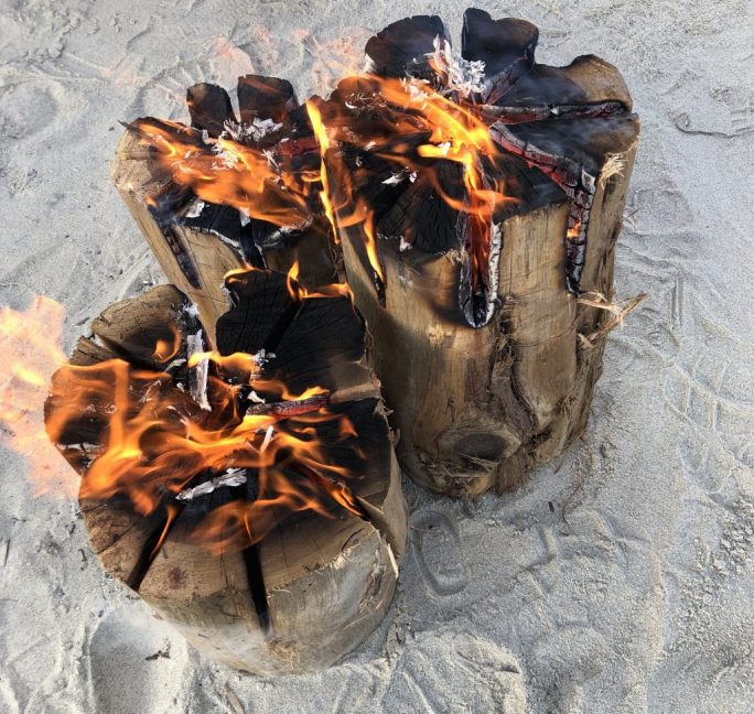 Bon fire logs on Duxbury beach