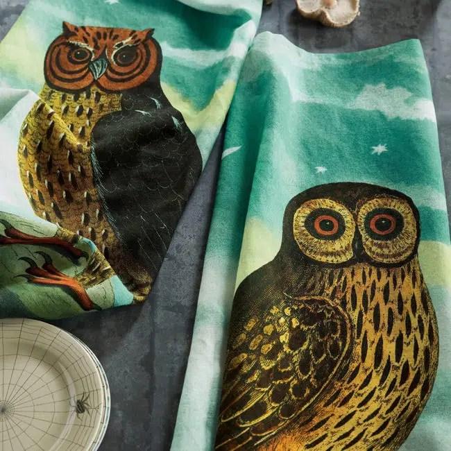 John Derian Halloween for Target owl dish towels